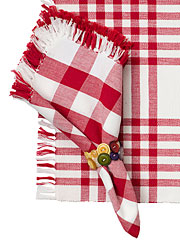 Happy Picnic Gingham Napkin Set/4 - Red